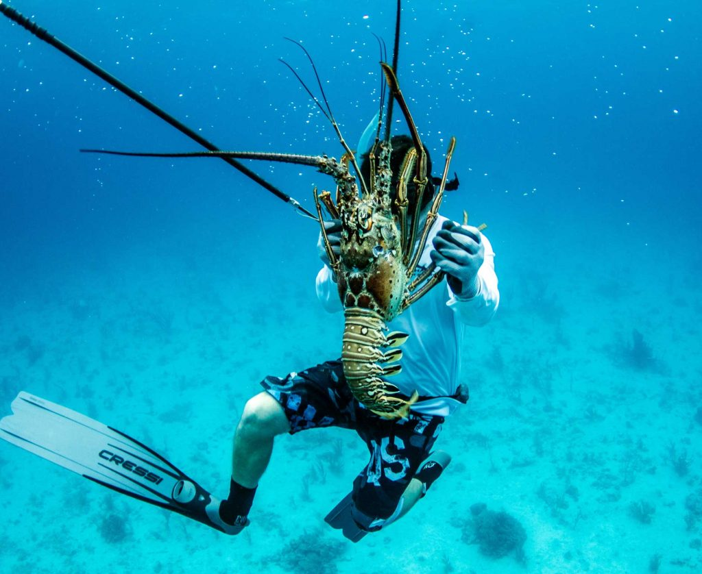 Key West Lobster Trip | Key West Fishing Charters | Far Out Fishing