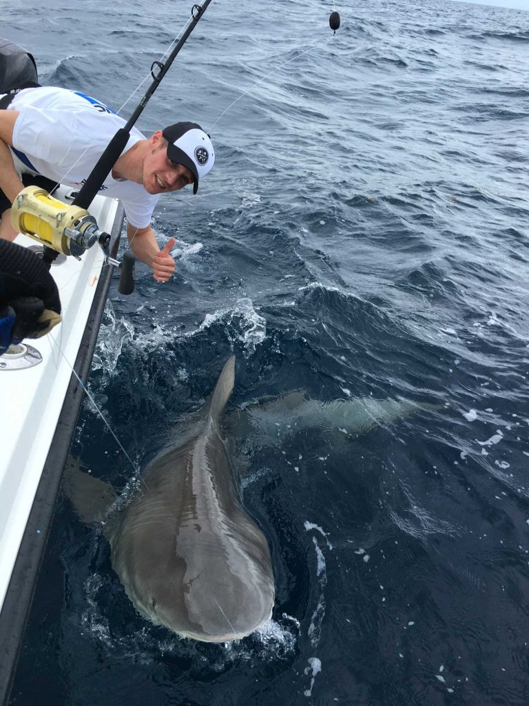 Shark fishing key west key west fishing charters far for Key west fishing charters