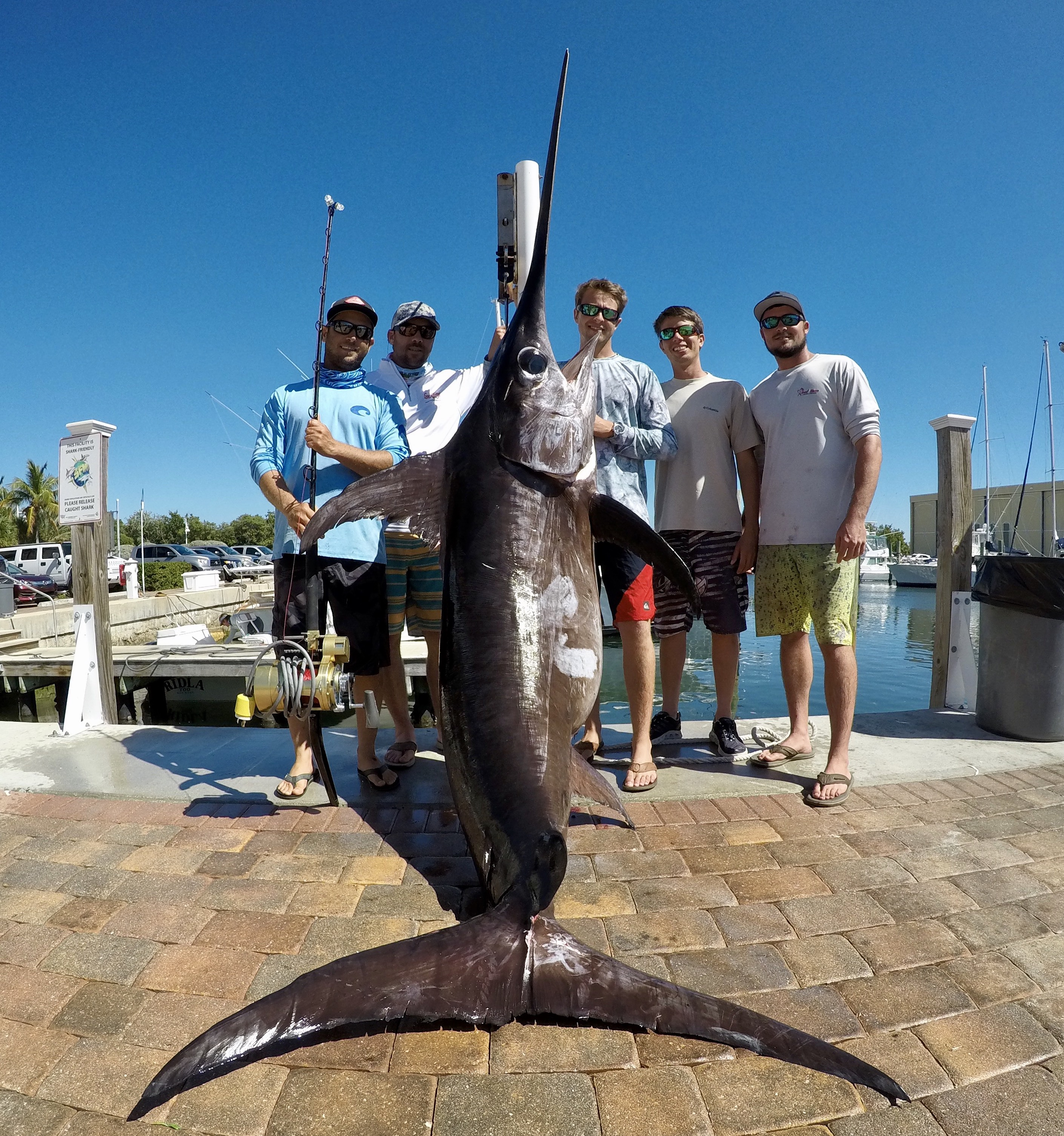 Key west fishing report key west fishing charters far for Key west fishing guides